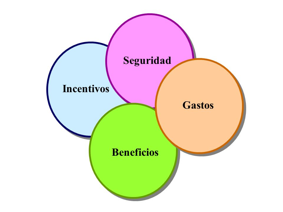 Seguridad Incentivos Gastos Beneficios