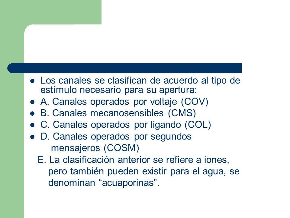 Los canales se clasifican de acuerdo al tipo de estímulo necesario para su apertura: