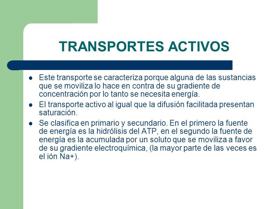 TRANSPORTES ACTIVOS