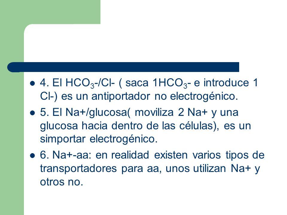 4. El HCO3-/Cl- ( saca 1HCO3- e introduce 1 Cl-) es un antiportador no electrogénico.