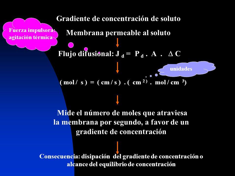 Gradiente de concentración de soluto Membrana permeable al soluto