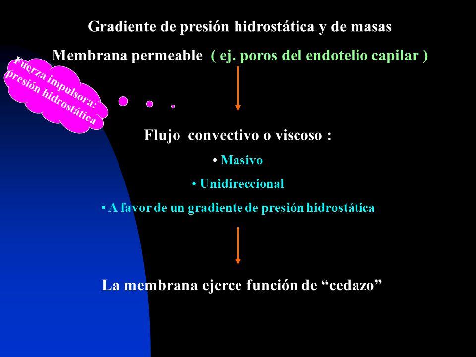 Gradiente de presión hidrostática y de masas