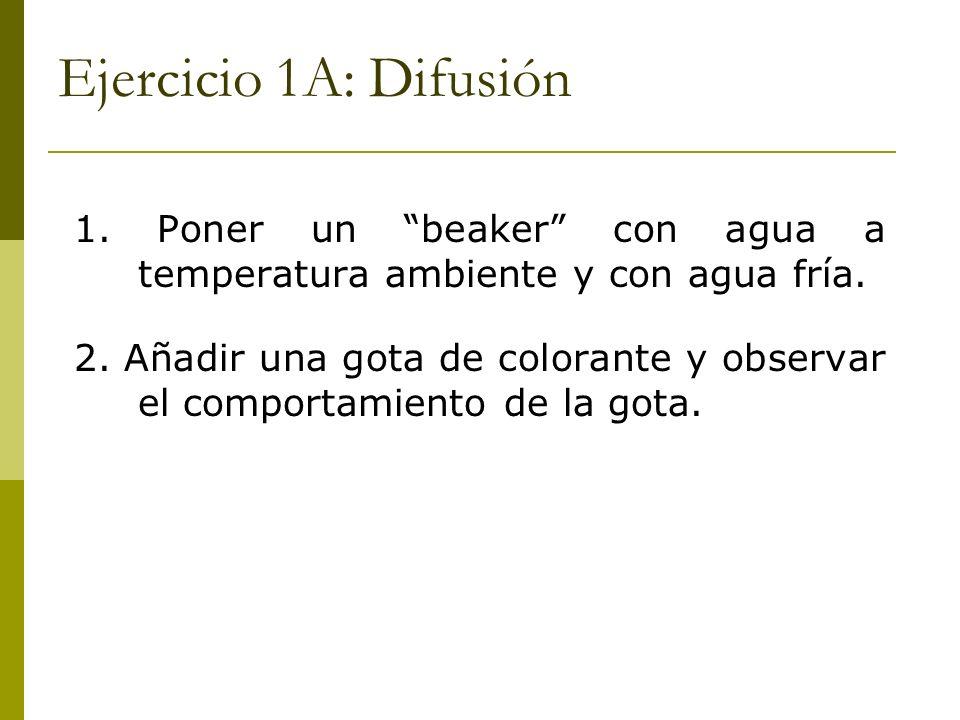 Ejercicio 1A: Difusión 1. Poner un beaker con agua a temperatura ambiente y con agua fría.