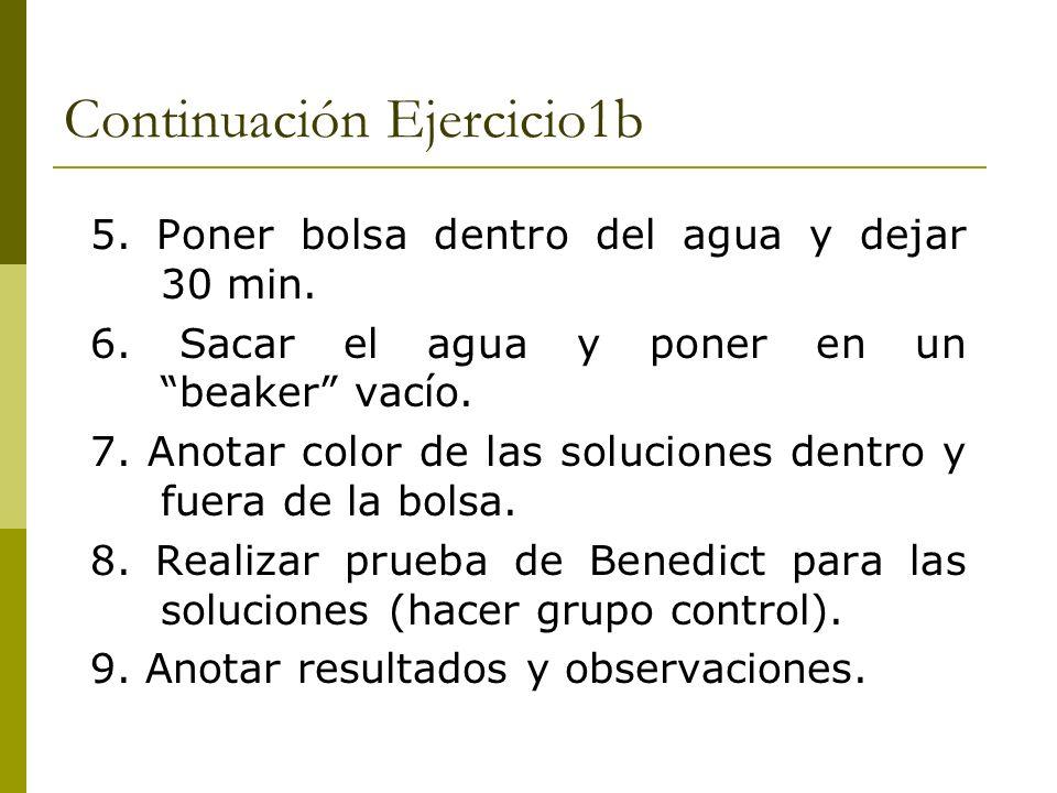 Continuación Ejercicio1b
