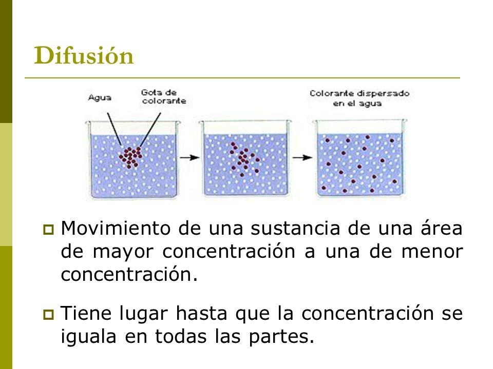 Difusión Movimiento de una sustancia de una área de mayor concentración a una de menor concentración.