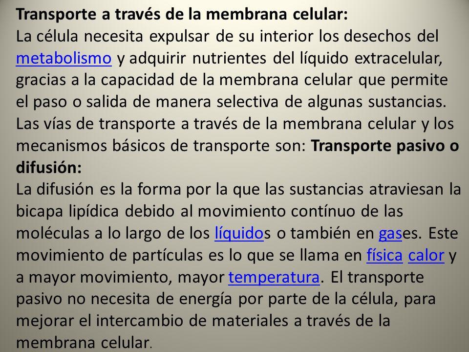 Transporte a través de la membrana celular:
