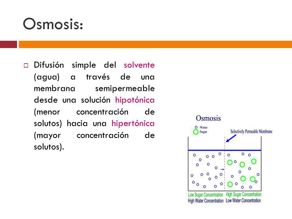 Osmosis: