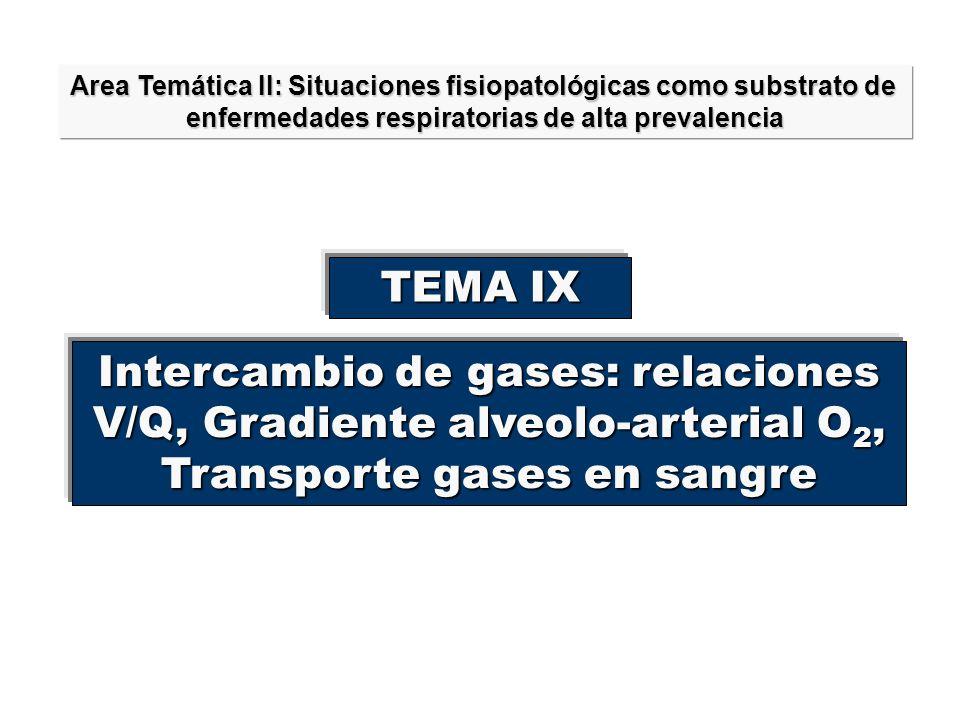Intercambio de gases: relaciones V/Q, Gradiente alveolo-arterial O2,