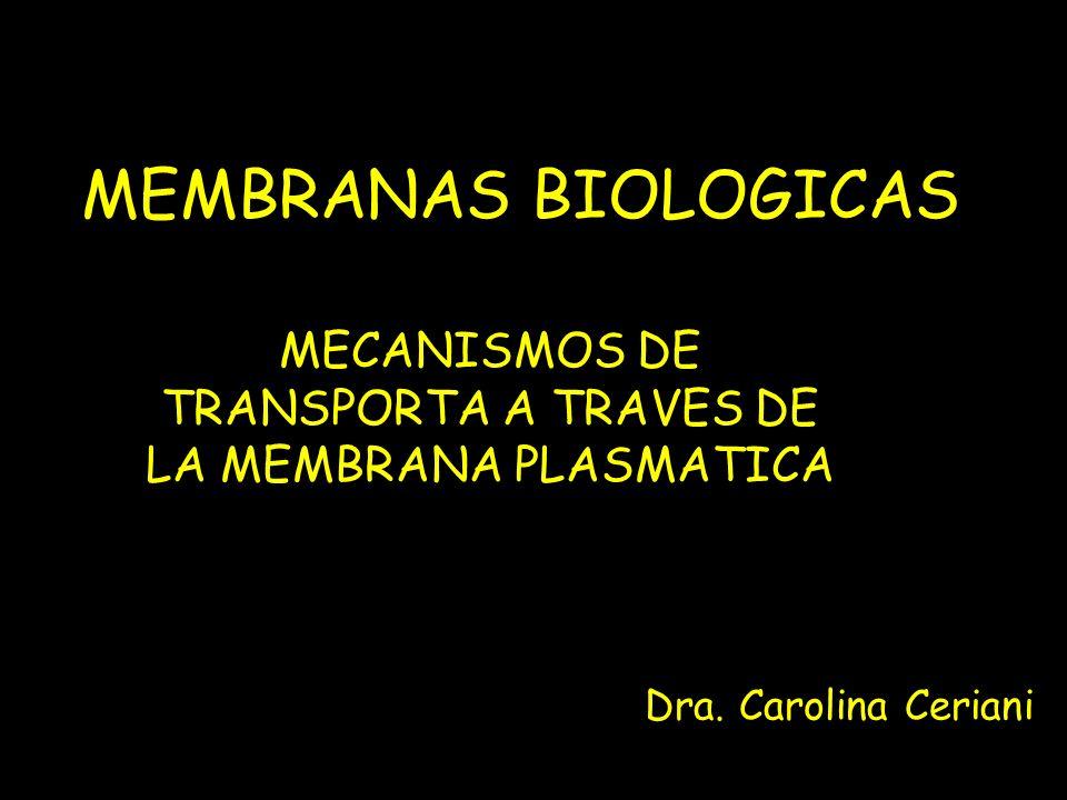MECANISMOS DE TRANSPORTA A TRAVES DE LA MEMBRANA PLASMATICA