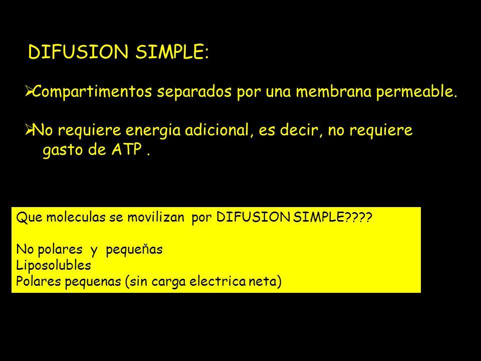 DIFUSION SIMPLE: Compartimentos separados por una membrana permeable.