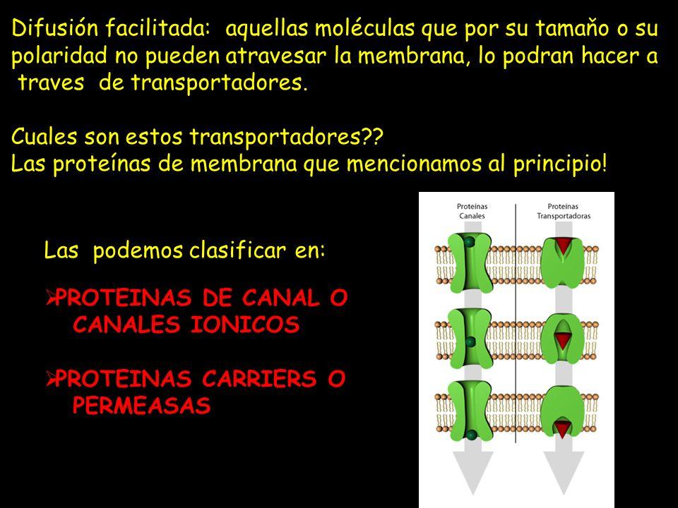 Difusión facilitada: aquellas moléculas que por su tamaňo o su