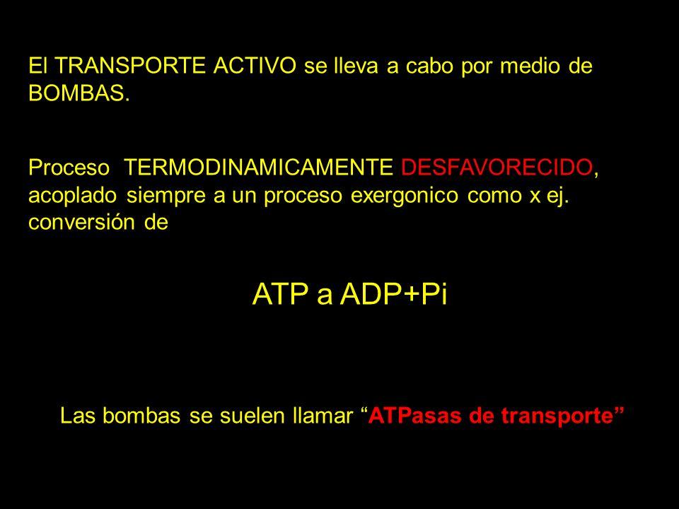 ATP a ADP+Pi El TRANSPORTE ACTIVO se lleva a cabo por medio de BOMBAS.