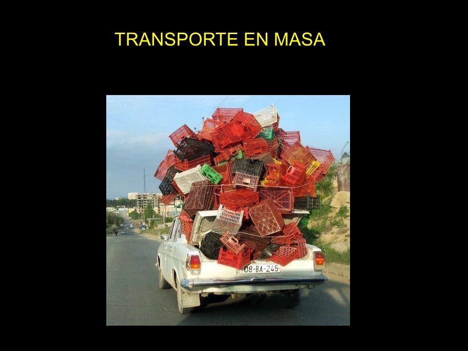 TRANSPORTE EN MASA