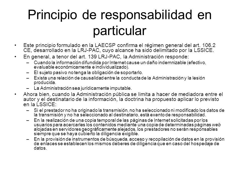 Principio de responsabilidad en particular