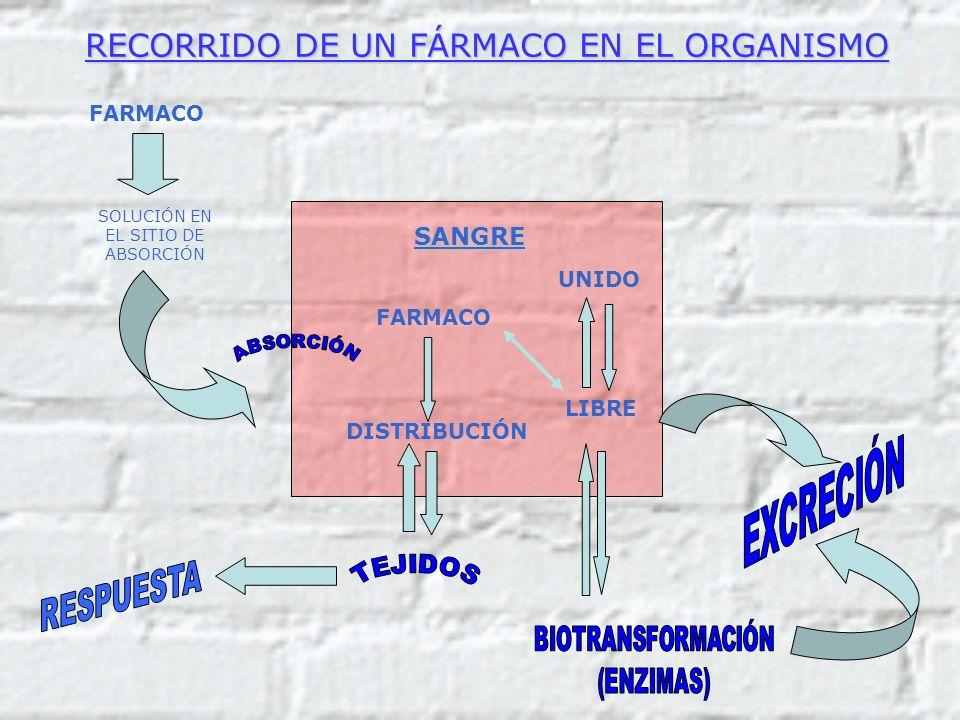 RECORRIDO DE UN FÁRMACO EN EL ORGANISMO