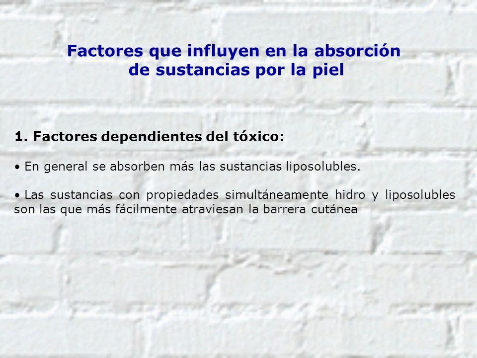 Factores que influyen en la absorción de sustancias por la piel