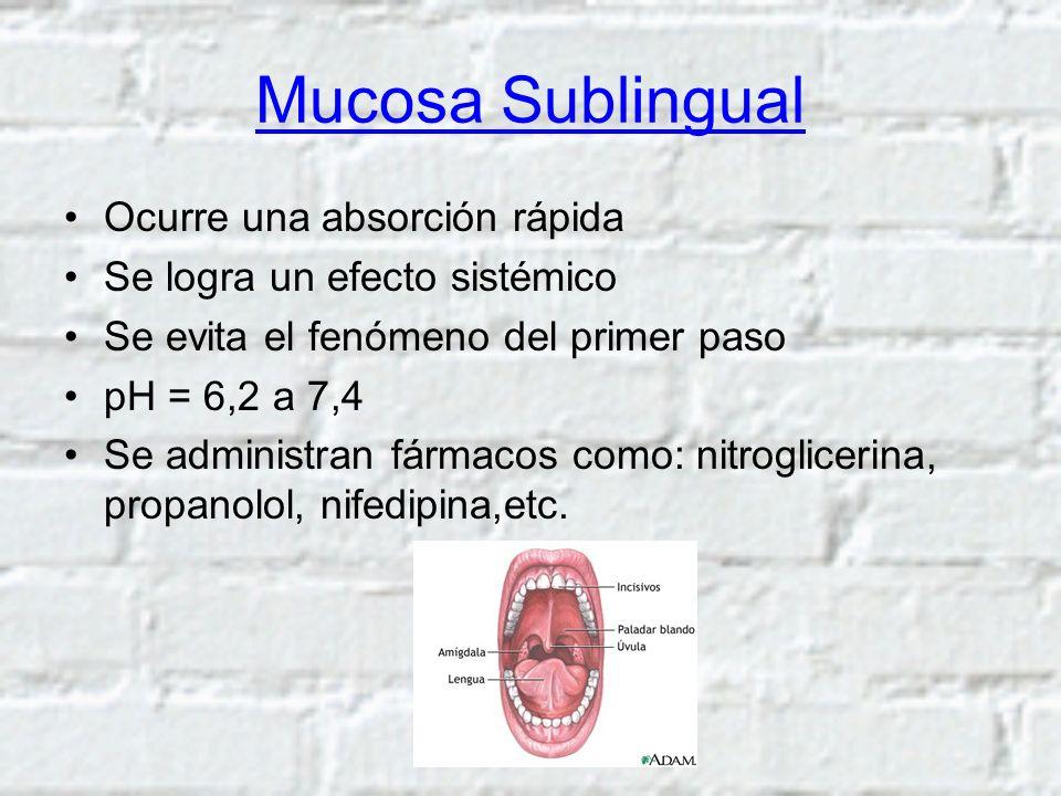 Mucosa Sublingual Ocurre una absorción rápida