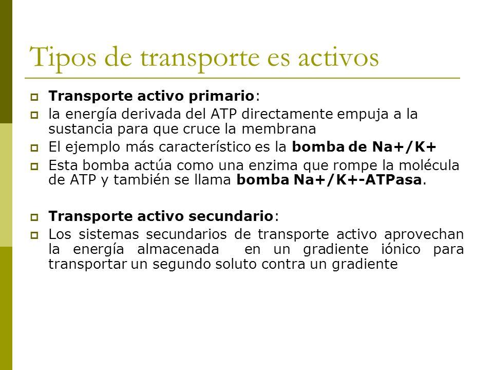 Tipos de transporte es activos
