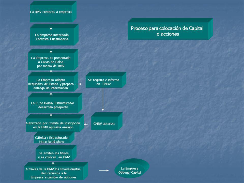 Proceso para colocación de Capital o acciones