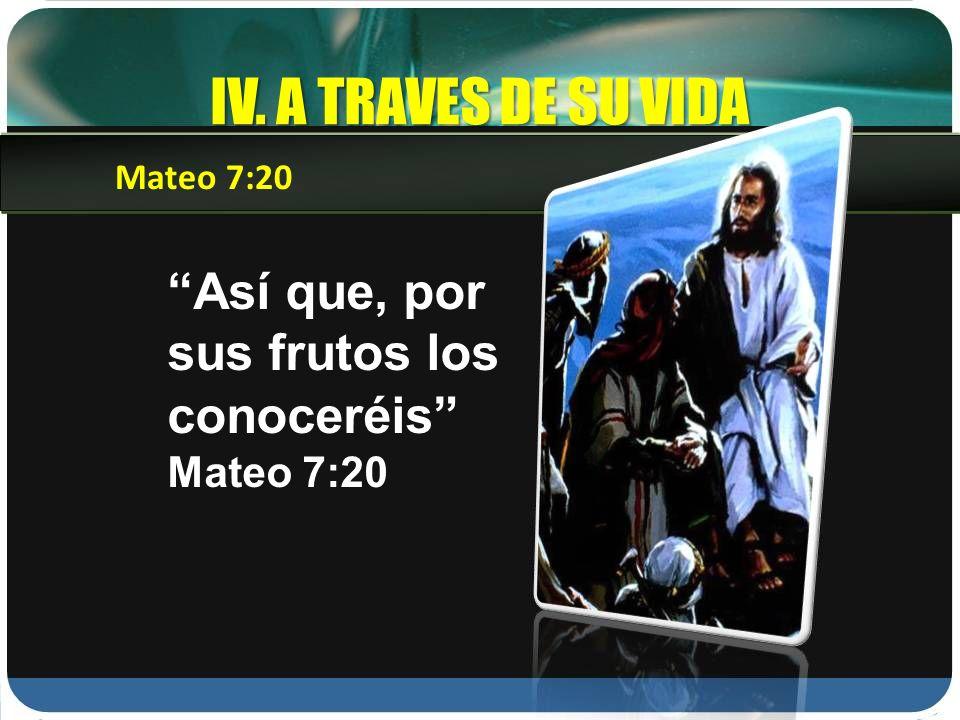 IV. A TRAVES DE SU VIDA Mateo 7:20 Así que, por sus frutos los conoceréis Mateo 7:20