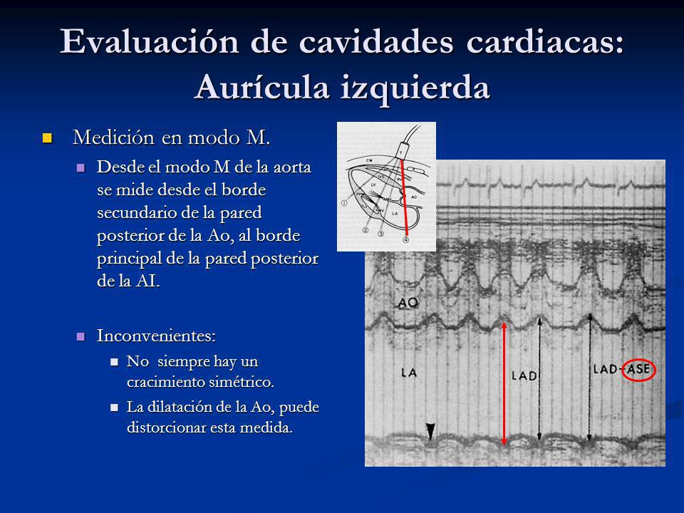 Evaluación de cavidades cardiacas: Aurícula izquierda