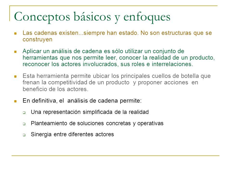 Conceptos básicos y enfoques