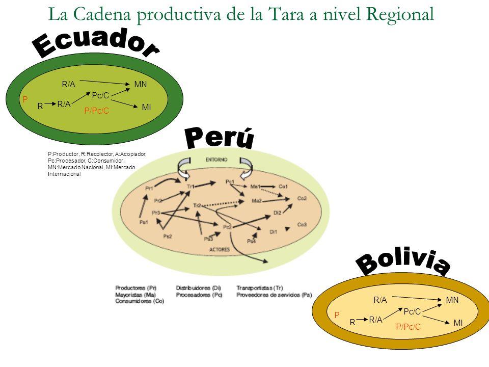 La Cadena productiva de la Tara a nivel Regional