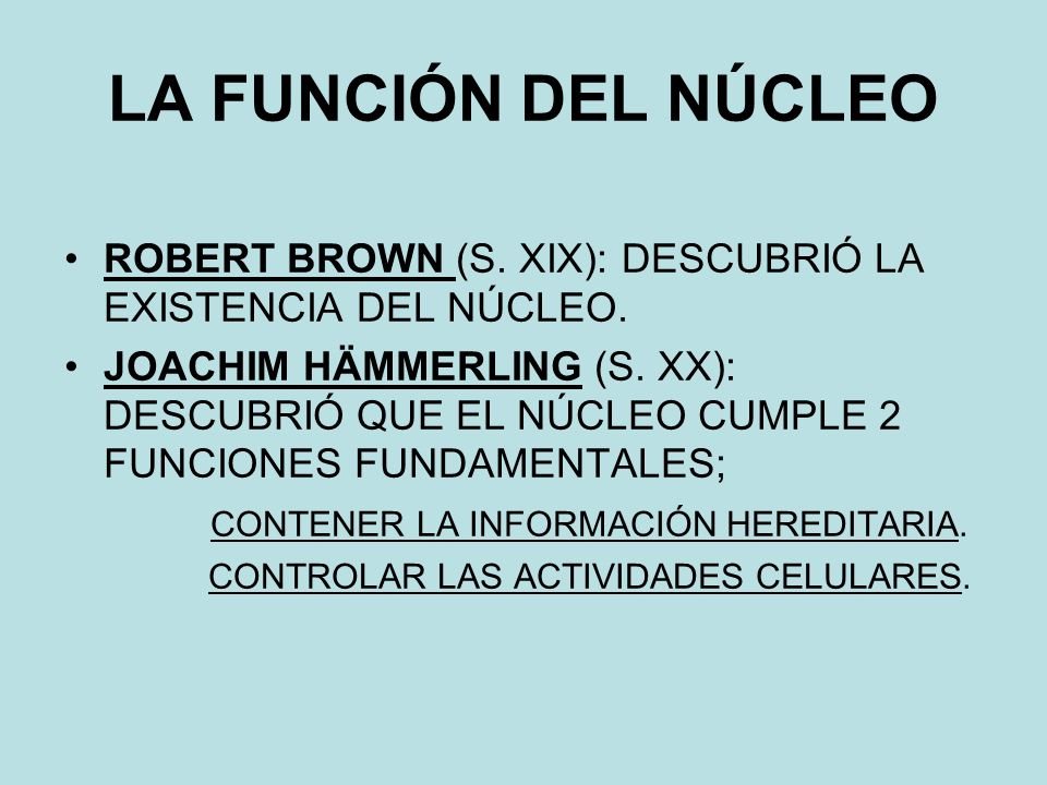 LA FUNCIÓN DEL NÚCLEO ROBERT BROWN (S. XIX): DESCUBRIÓ LA EXISTENCIA DEL NÚCLEO.