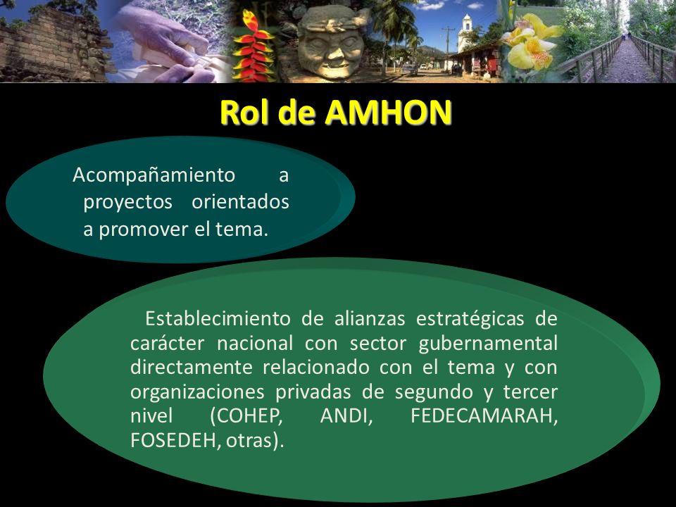 Rol de AMHON Acompañamiento a proyectos orientados a promover el tema.
