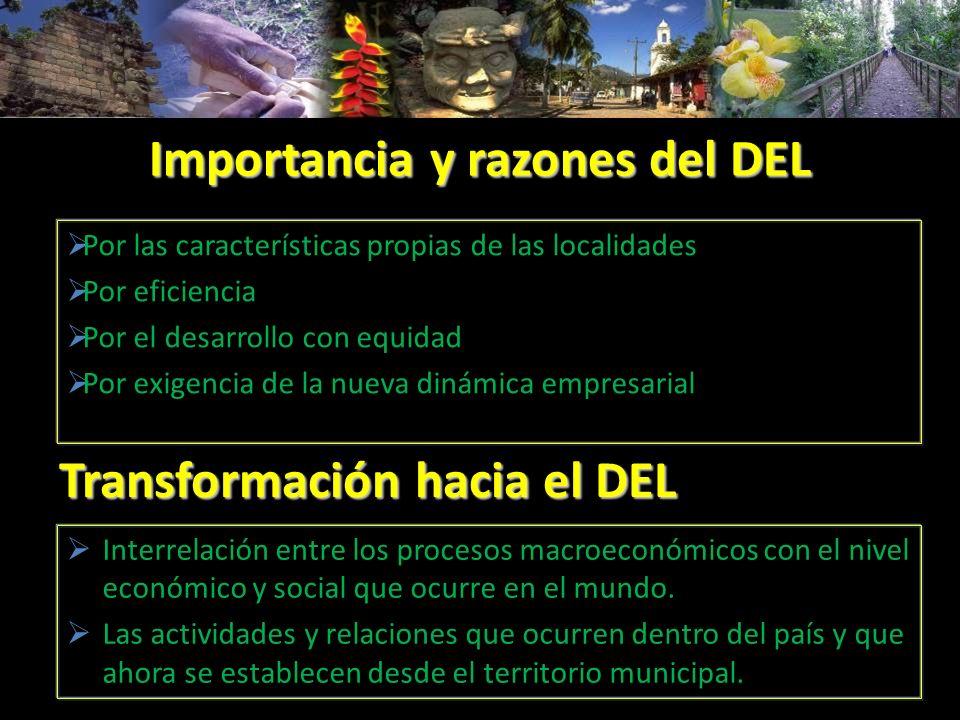Importancia y razones del DEL