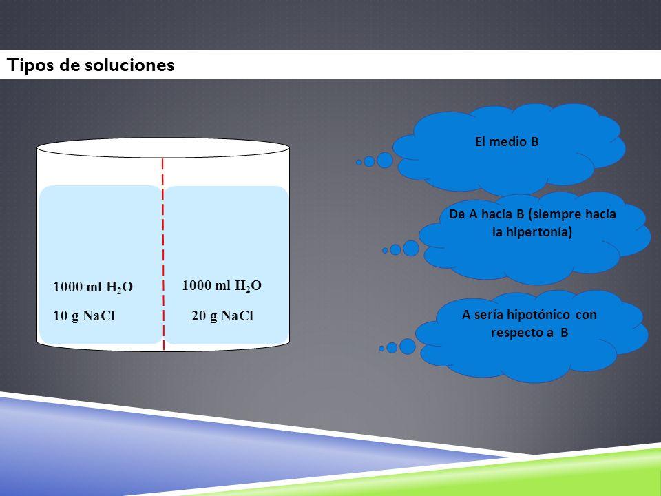 Tipos de soluciones El medio B A B 1000 ml H2O 10 g NaCl 20 g NaCl