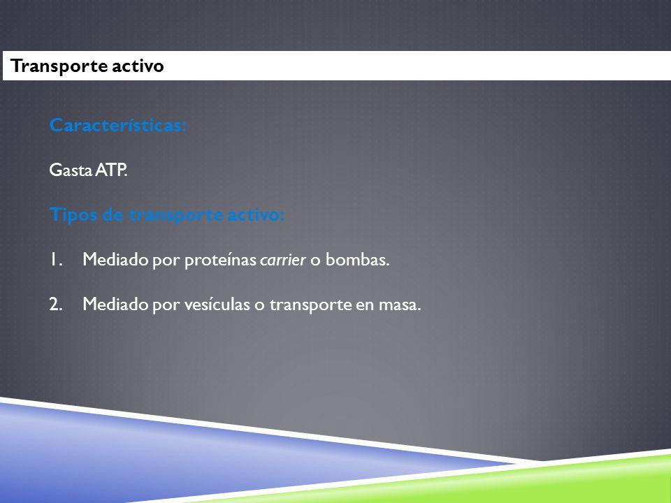Transporte activoCaracterísticas: Gasta ATP. Tipos de transporte activo: Mediado por proteínas carrier o bombas.
