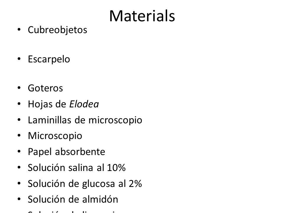 Materials Cubreobjetos Escarpelo Goteros Hojas de Elodea