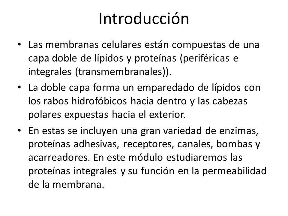 Introducción Las membranas celulares están compuestas de una capa doble de lípidos y proteínas (periféricas e integrales (transmembranales)).
