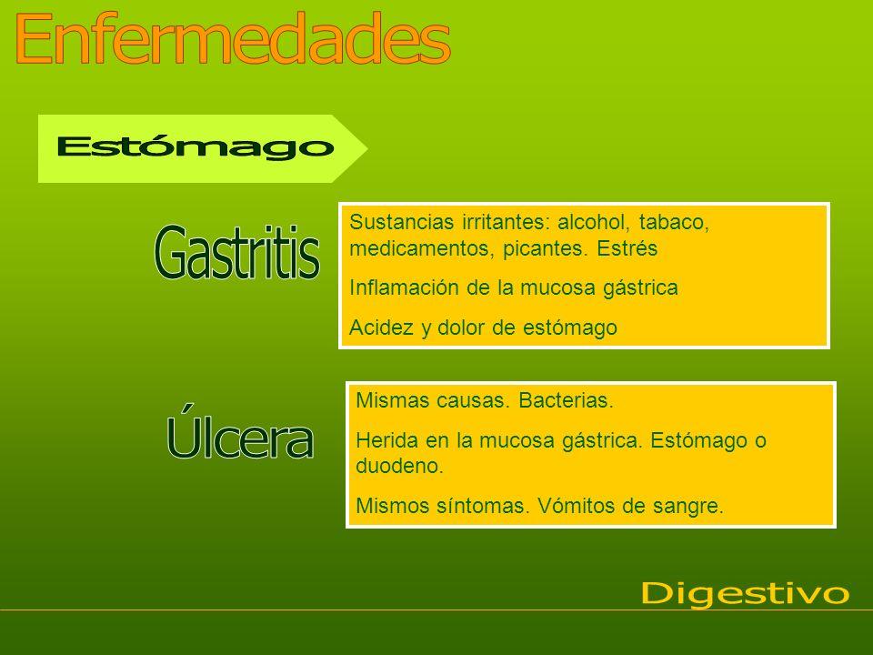 Enfermedades Estómago Gastritis Úlcera Digestivo