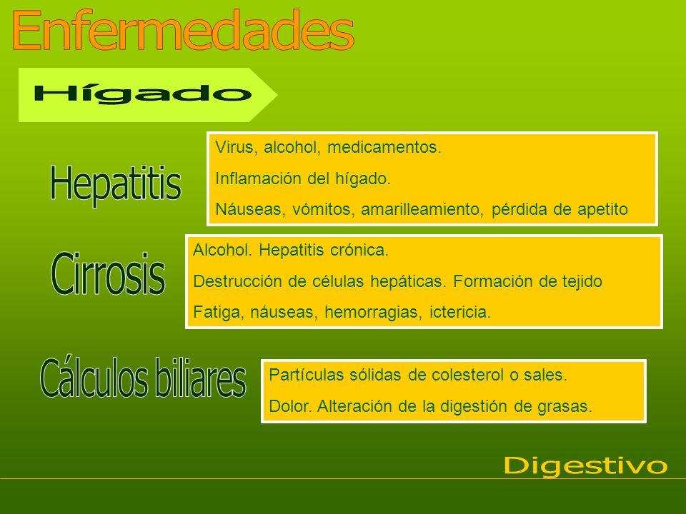 Enfermedades Hígado Hepatitis Cirrosis Cálculos biliares Digestivo