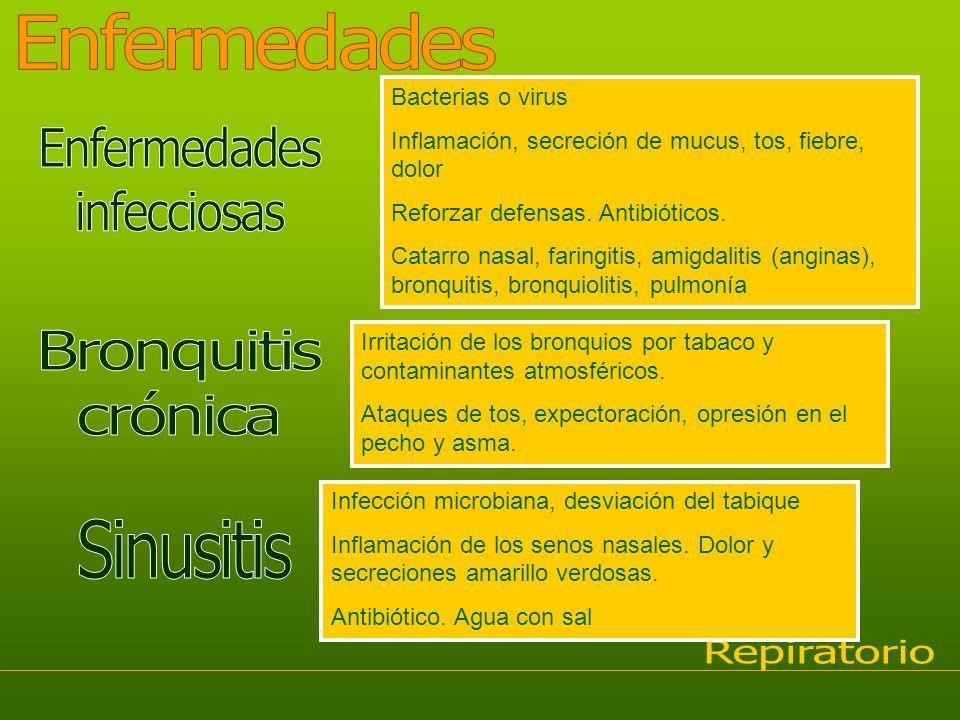 Enfermedades Enfermedades infecciosas Bronquitis crónica Sinusitis