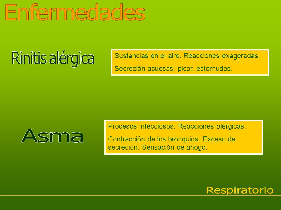Enfermedades Rinitis alérgica Asma Respiratorio