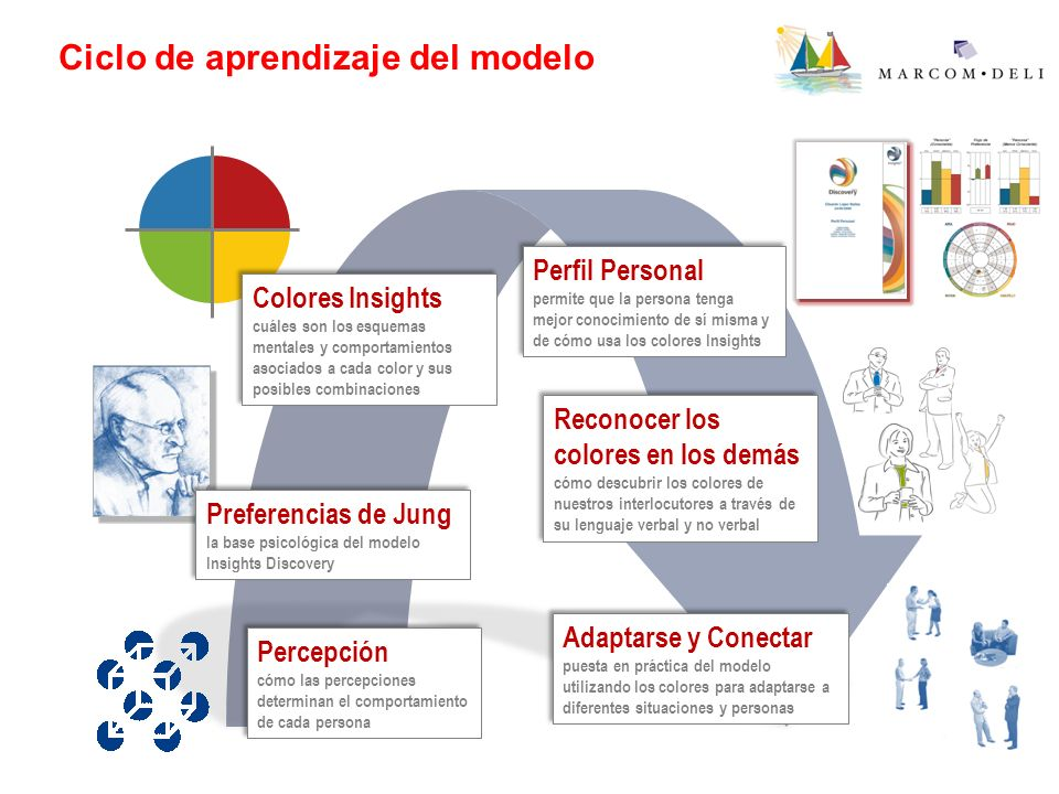 Ciclo de aprendizaje del modelo