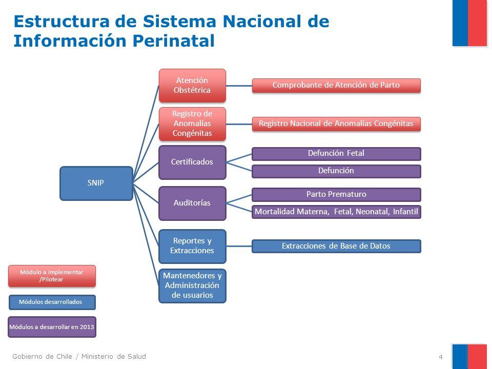 Estructura de Sistema Nacional de Información Perinatal