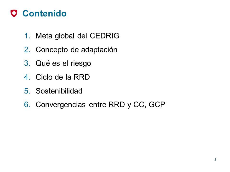 Contenido Meta global del CEDRIG Concepto de adaptación