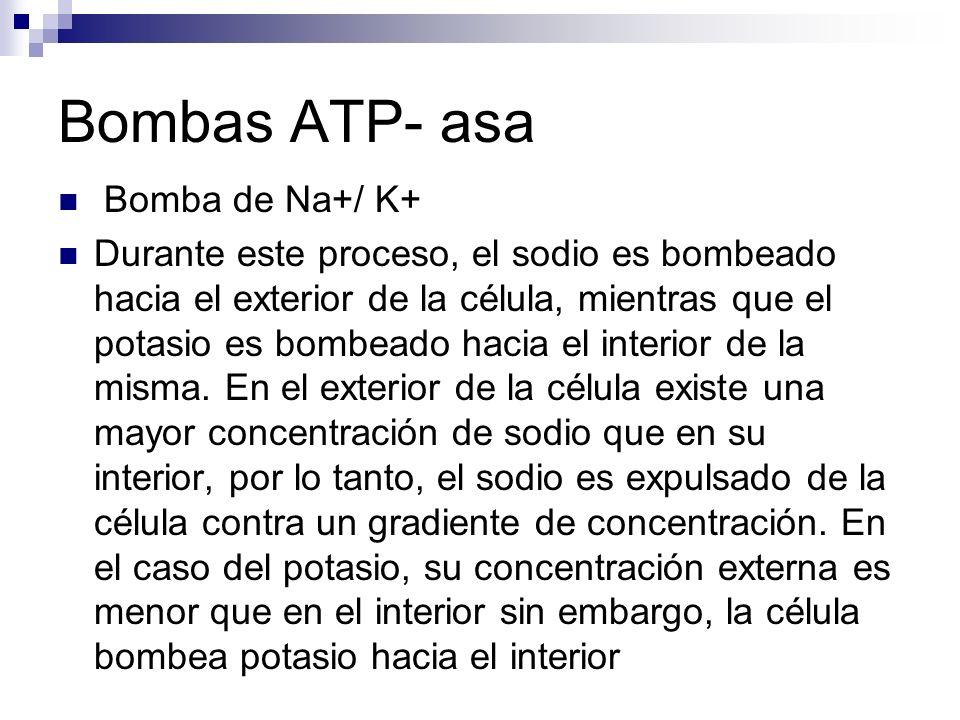 Bombas ATP- asa Bomba de Na+/ K+
