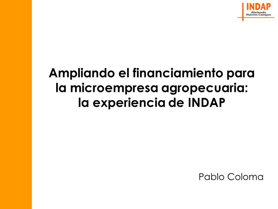 Ampliando el financiamiento para la microempresa agropecuaria: la experiencia de INDAP