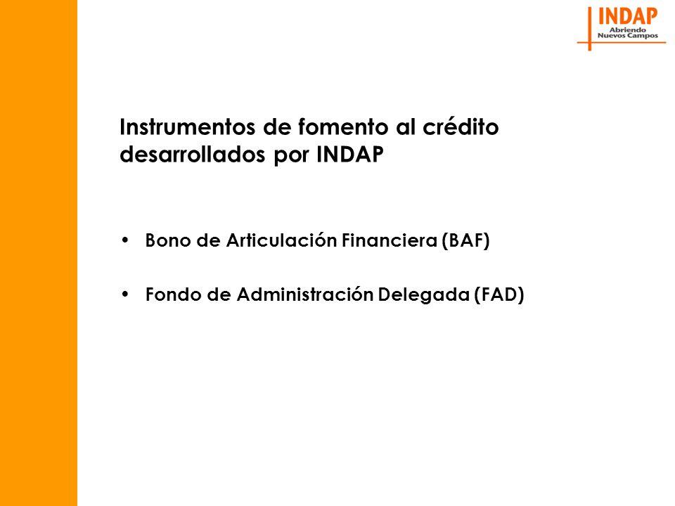 Instrumentos de fomento al crédito desarrollados por INDAP