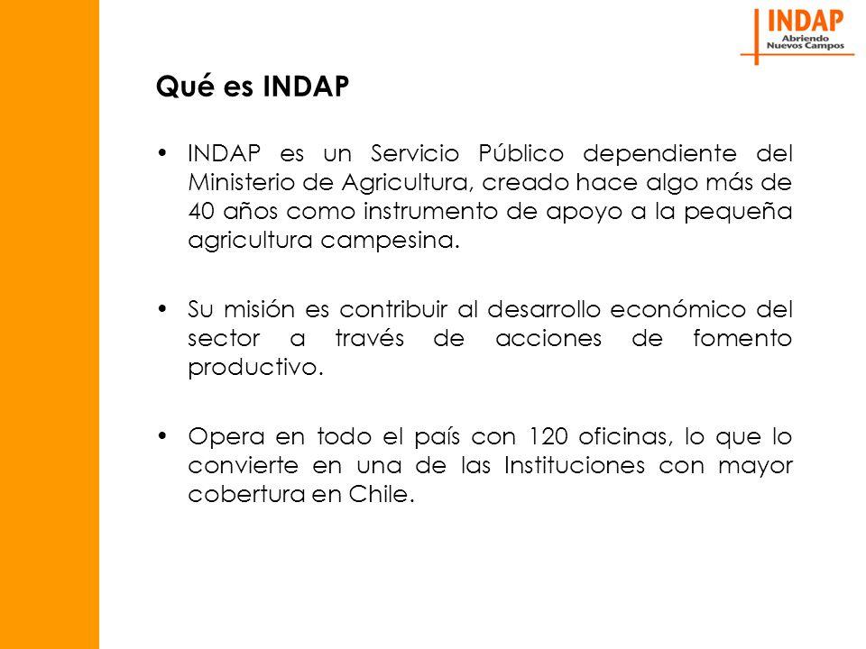 Qué es INDAP