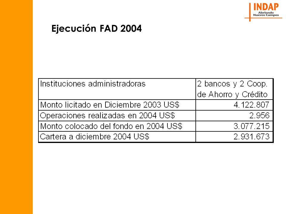 Ejecución FAD 2004