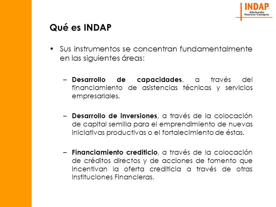 Qué es INDAP Sus instrumentos se concentran fundamentalmente en las siguientes áreas: