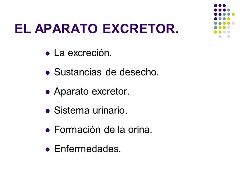 EL APARATO EXCRETOR. La excreción. Sustancias de desecho.