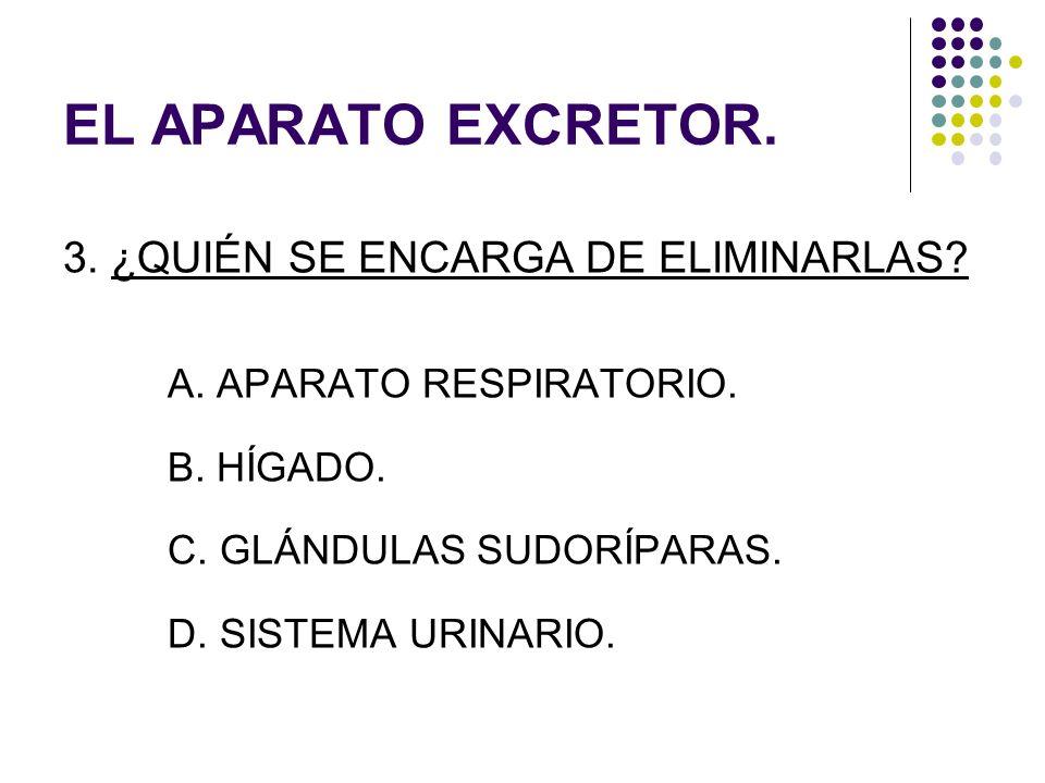 EL APARATO EXCRETOR. 3. ¿QUIÉN SE ENCARGA DE ELIMINARLAS