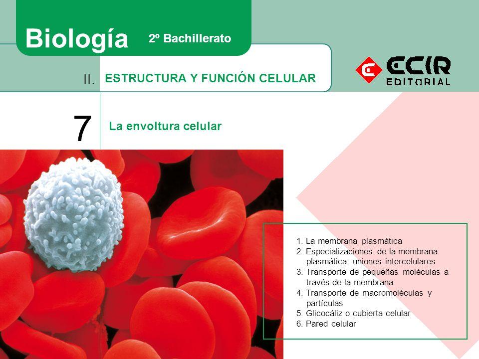 7 Biología II. 2º Bachillerato ESTRUCTURA Y FUNCIÓN CELULAR